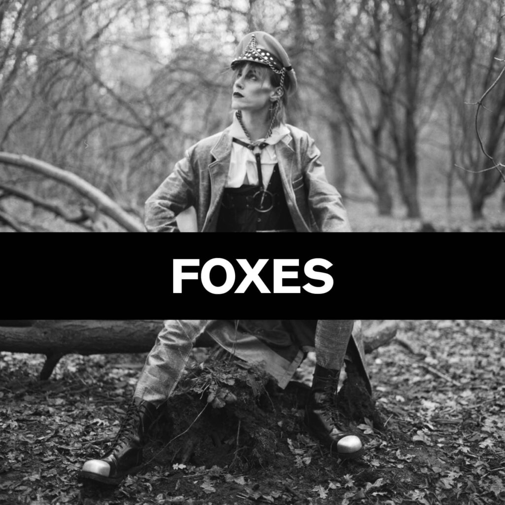 Press Features Gallery - Foxes