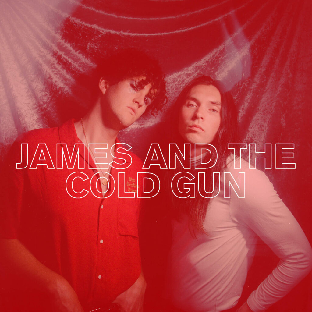 JAMES AND THE COLD GUN BAND PAGE ICON